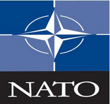 Fornitura Canili per le Basi Nato alla Dogbox
